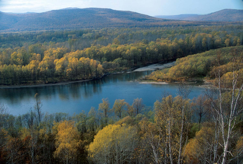 Koppi River Preserve, Russia
