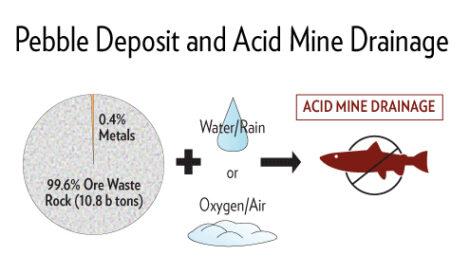 Pebble Deposits and Acid Mine Drainage
