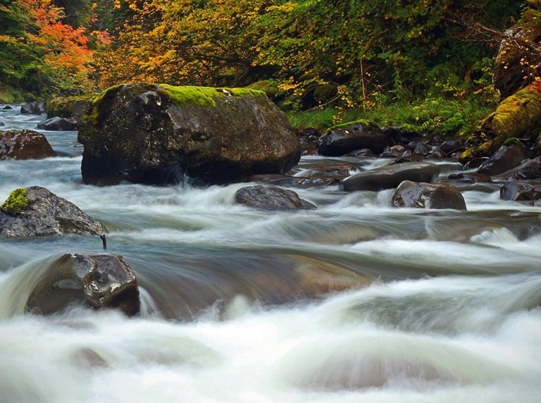 Sol Duc River in fall colors
