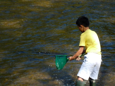 Sakhalin Salmon Initiative