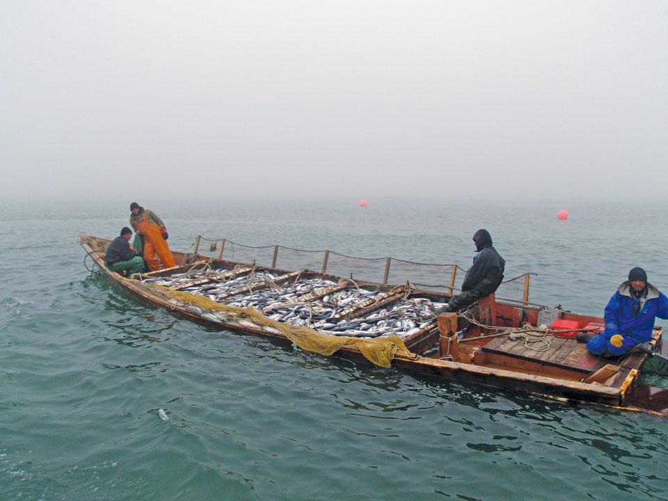Kamchatka Fishermen