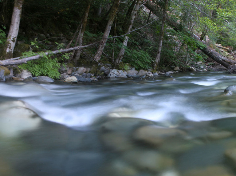 Hurdy Gurdy Creek, a tributary of the Smith River in Northern California