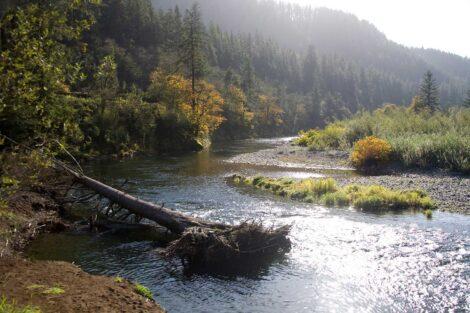 Tillamook River, Oregon