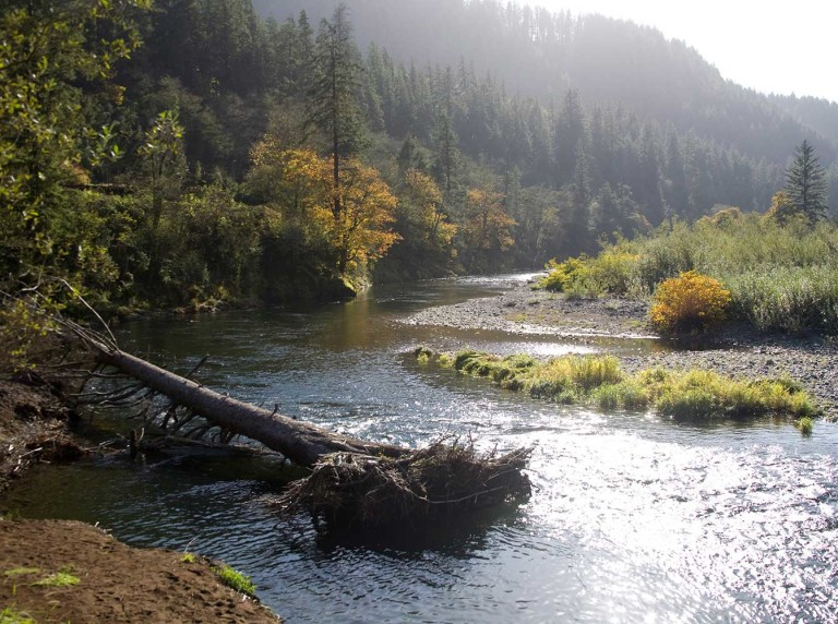 Tillamook River, Oregon