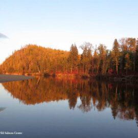 Tugur River, Russia