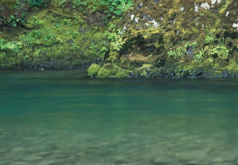 Sol Duc River, Olympic Peninsula, Washington.