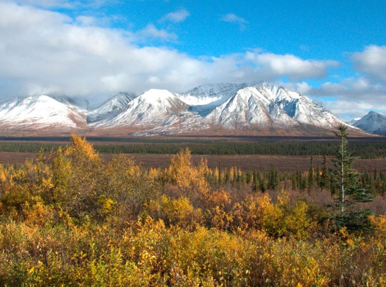 The Susitna with Denali in the background