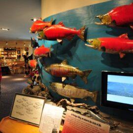 Campbell Science Center, Alaska.