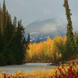 Fall colors in the Skeena-Sustut Watershed