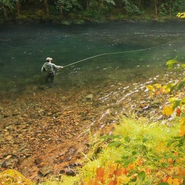 Fly fishing on Oregon's Umpqua River