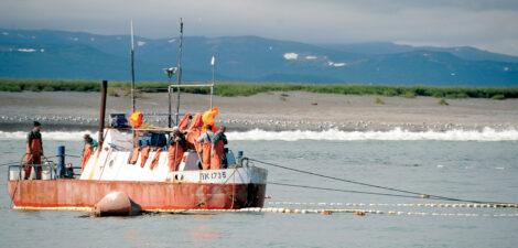 Karaginsky Bay salmon fishery, Kamchatka