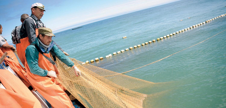 Fishing in Kamchatka's Karaginsky Bay