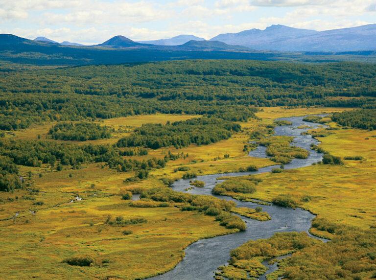 Kol River, Kamchatka