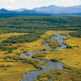 Kol River, Kamchatka