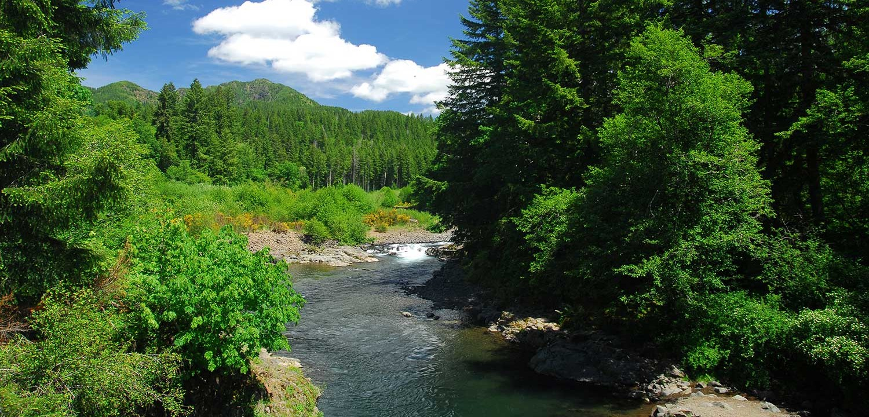 Wilson River Oregon