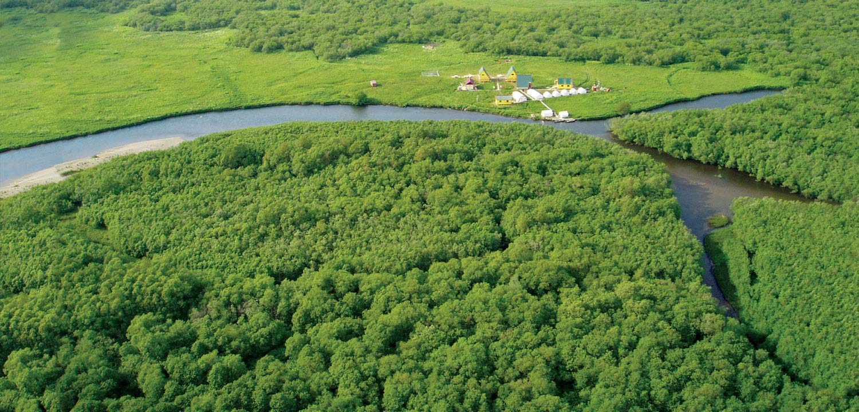Kol River Biostation, Kamchatka, Russia