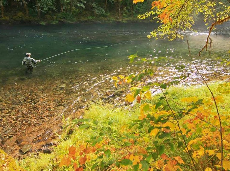 Fly fishing on Oregon's North Umpqua River