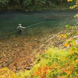 Fly fishing on Oregon's North Umpqua River