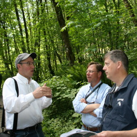 Three men talking in forest.