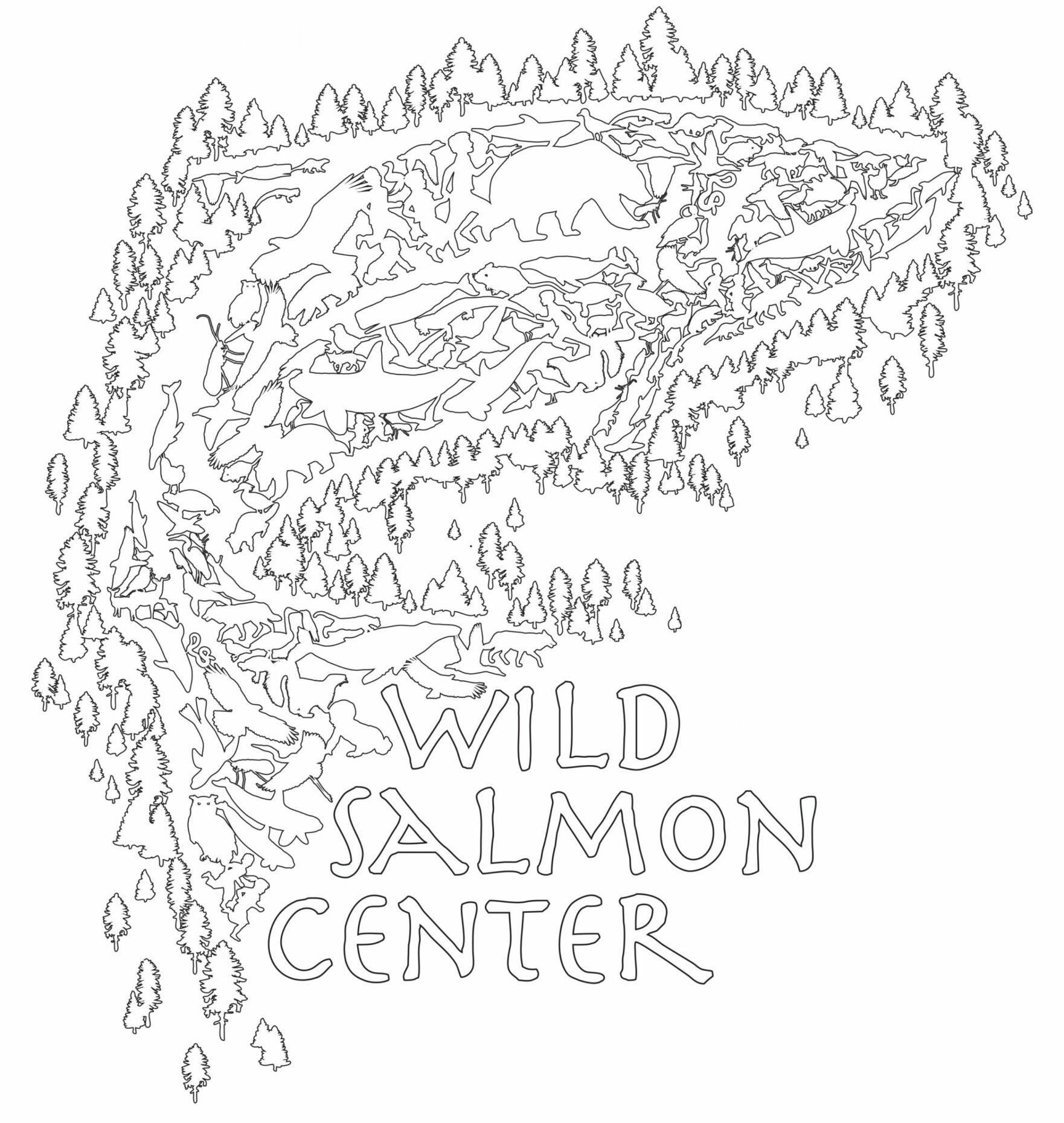 Salmon School   Wild Salmon Center